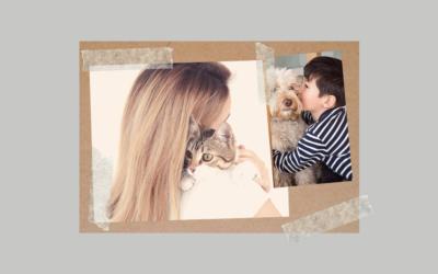 Czy pies i kot lubią się przytulać?